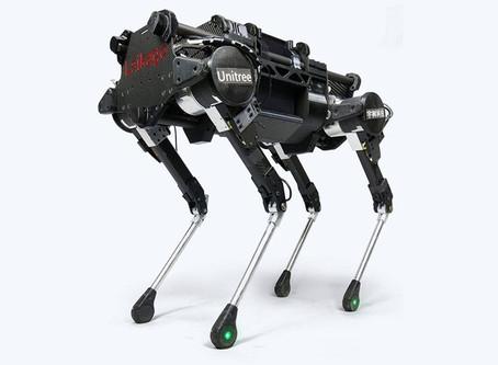 Cães reais ensinam cachorro-robô da Google a andar
