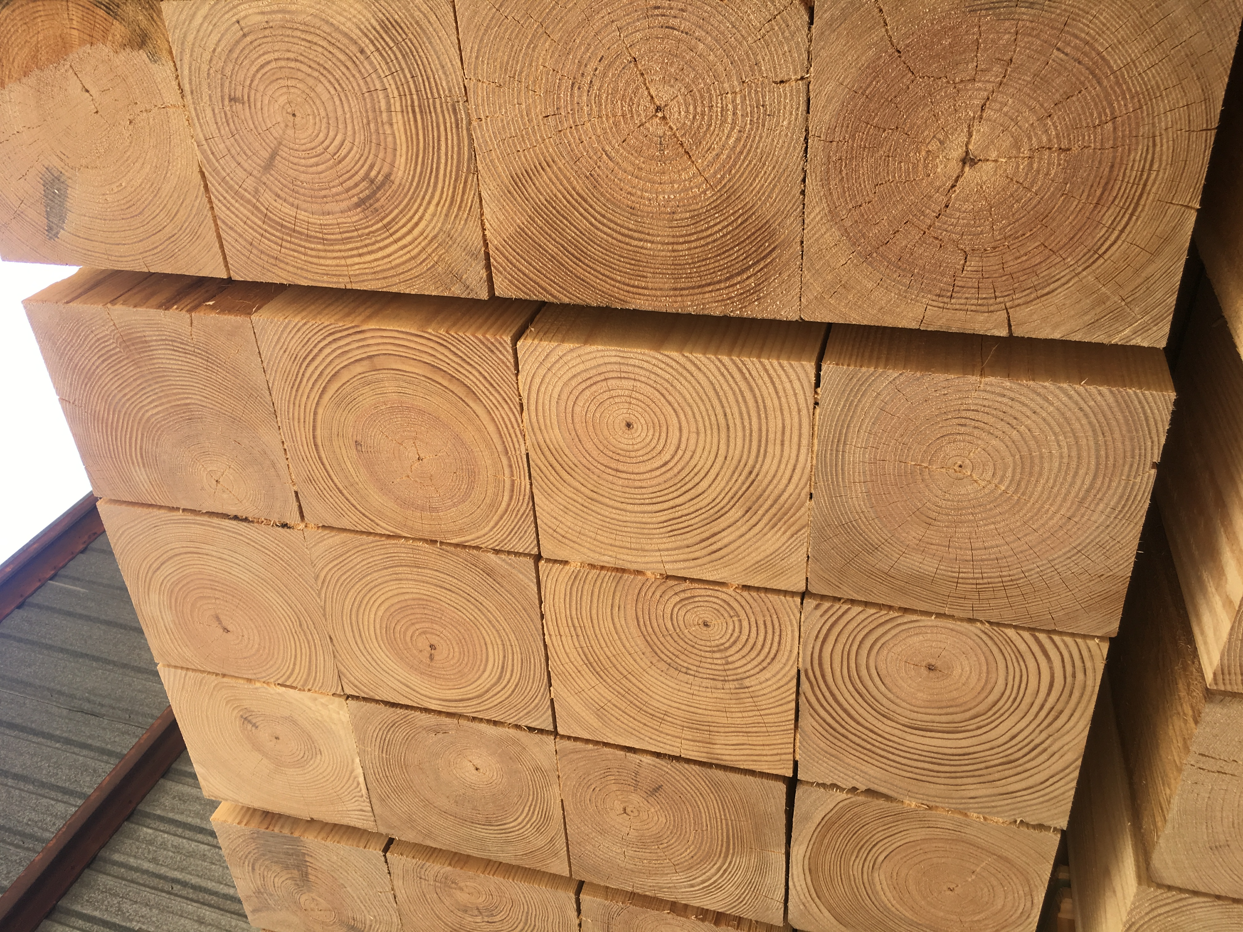 End-trimmed timbers