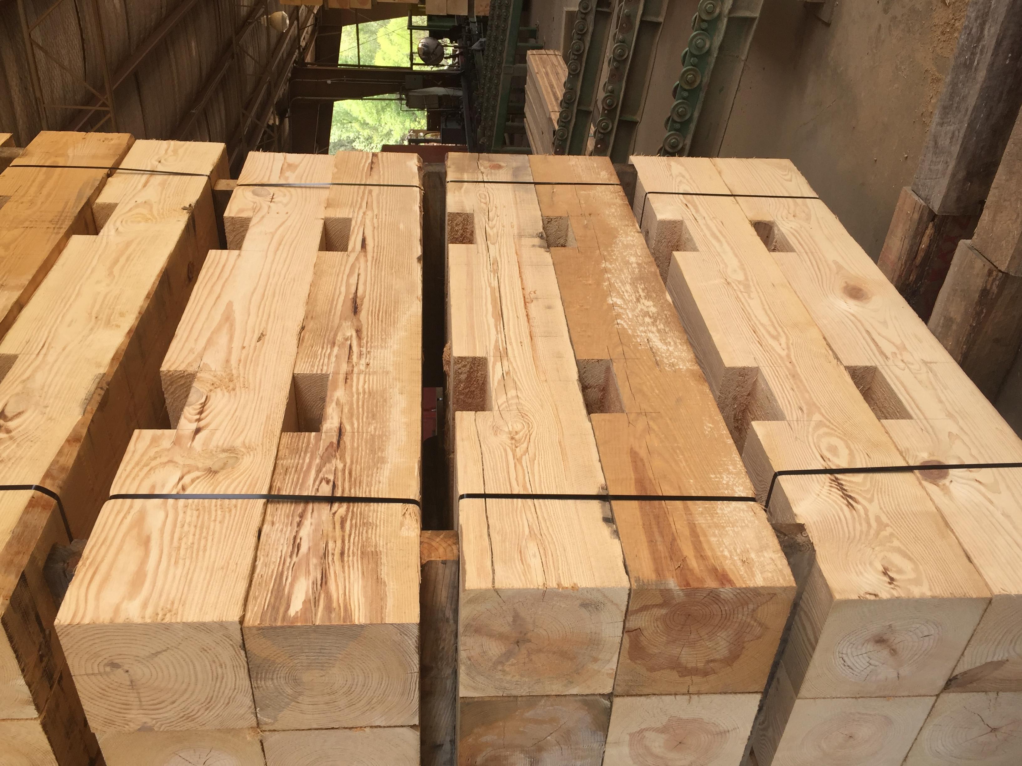 Dapped Timbers