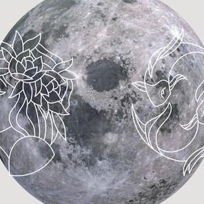Pourquoi la Vierge et le Poissons sont complémentaires en astrologie ? - Comprendre l'axe