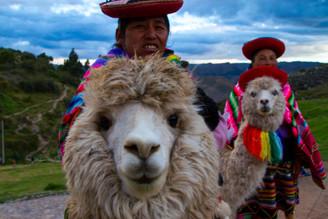 Machu Picchu tem vendas suspensas temporariamente