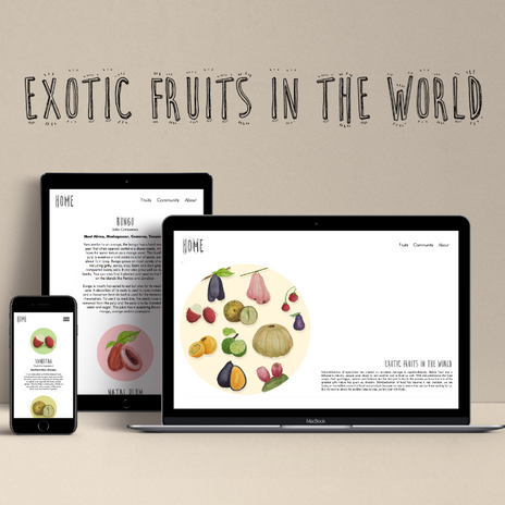 Exotic Fruits.