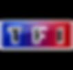 TF1-logo-1_edited.png