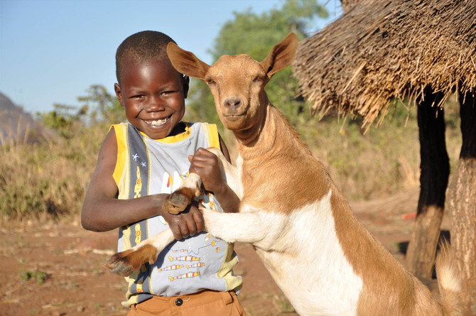 Goats in our World