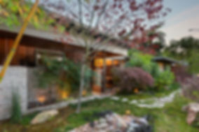front garden 2 web.jpg