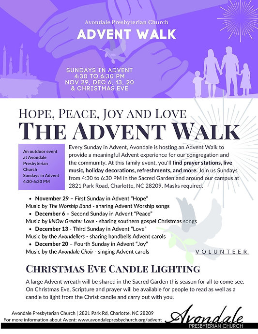 The Advent Walk at Avondale.jpg