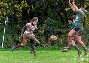 kick and chase.jpg