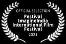 Laurel ImagineIndia Festival 2021.jpg