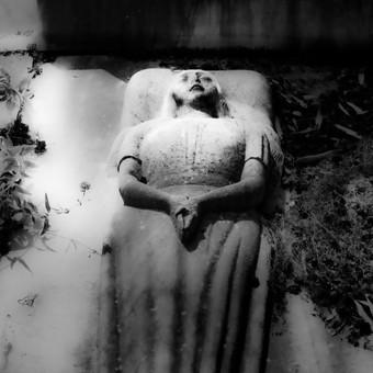 La Mère Méditérranée