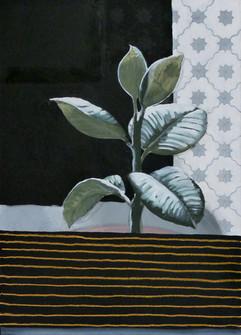 senza titolo 50x70 olio, acrilico e gesso su tela 50x70 2011