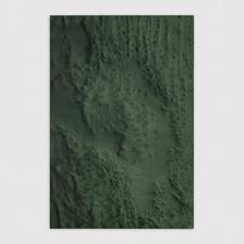 frottage_Madonna delle rocce | 2019 olio su tela 67x47 cm