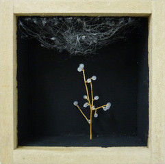 senza titolo. tecniche miste in teca di legno e vetro.10x10 cm 2010