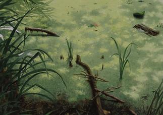 Linda Carrara - Forest -2020 - Olio su t