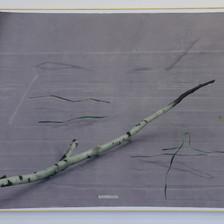 Chôra | 2019, olio, grafite, pelle di serpente e cornice in legno su tela, 170 x 207 cm