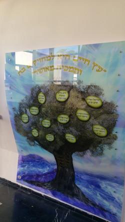 עץ חיים (3)