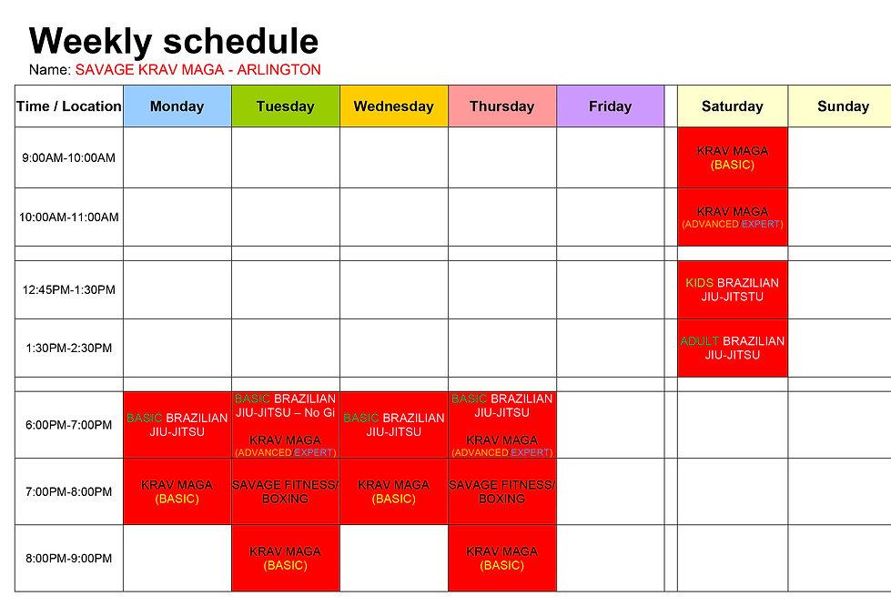 Savage Krav Maga Schedule Arlington.jpg