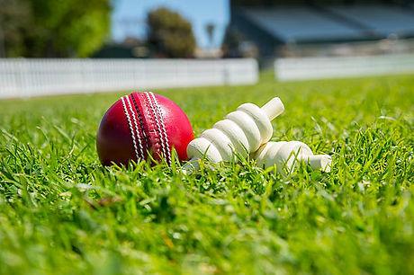 ball wickets.jpg