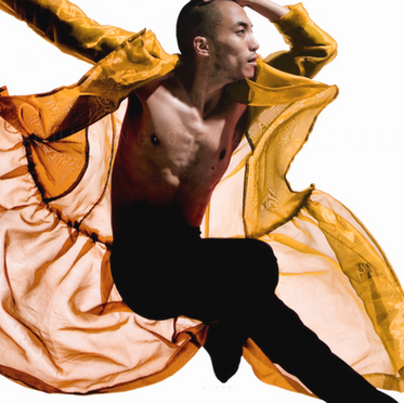 NW Dance Project:  Art and Culture Audience Insight