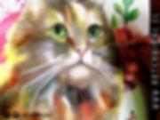 arte retrato mascota perro gato