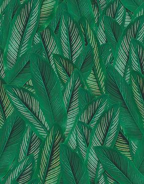 jungle leaves green web.jpg