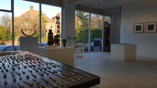 Fringe Arts Bath, Sightlines accept exhibition proposal for Workman