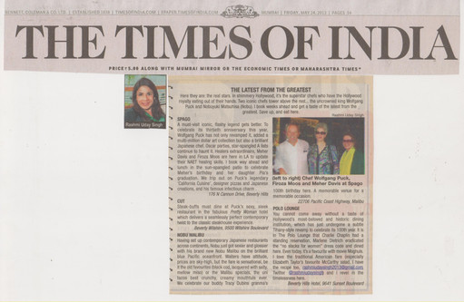 times-of-india-24th-may-2013.jpg