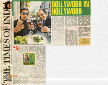 times-of-india-27th-april-2011.jpg