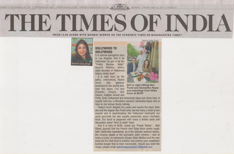 times-of-india-10th-may-2013.jpg