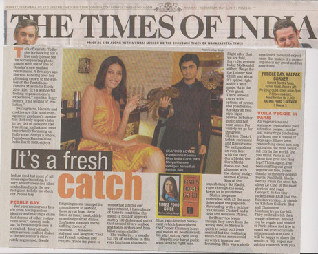 times-of-india-5th-may-2010.jpg