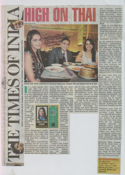 times-of-india-20th-april-2011.jpg