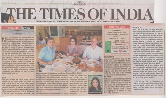 times-of-india-15th-feb-2013.jpg