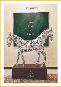 Love Has Two Faces by Sonal Ambani-page-