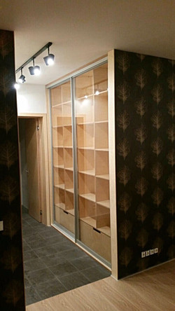 шкаф-купе стеклянные двери-1 #funera