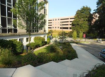 site visit 015-cropped.jpg
