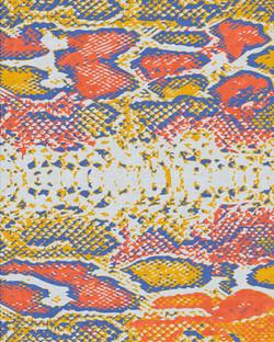 Snake Skin (Brazil)