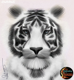 White Tiger - Diego Valdez