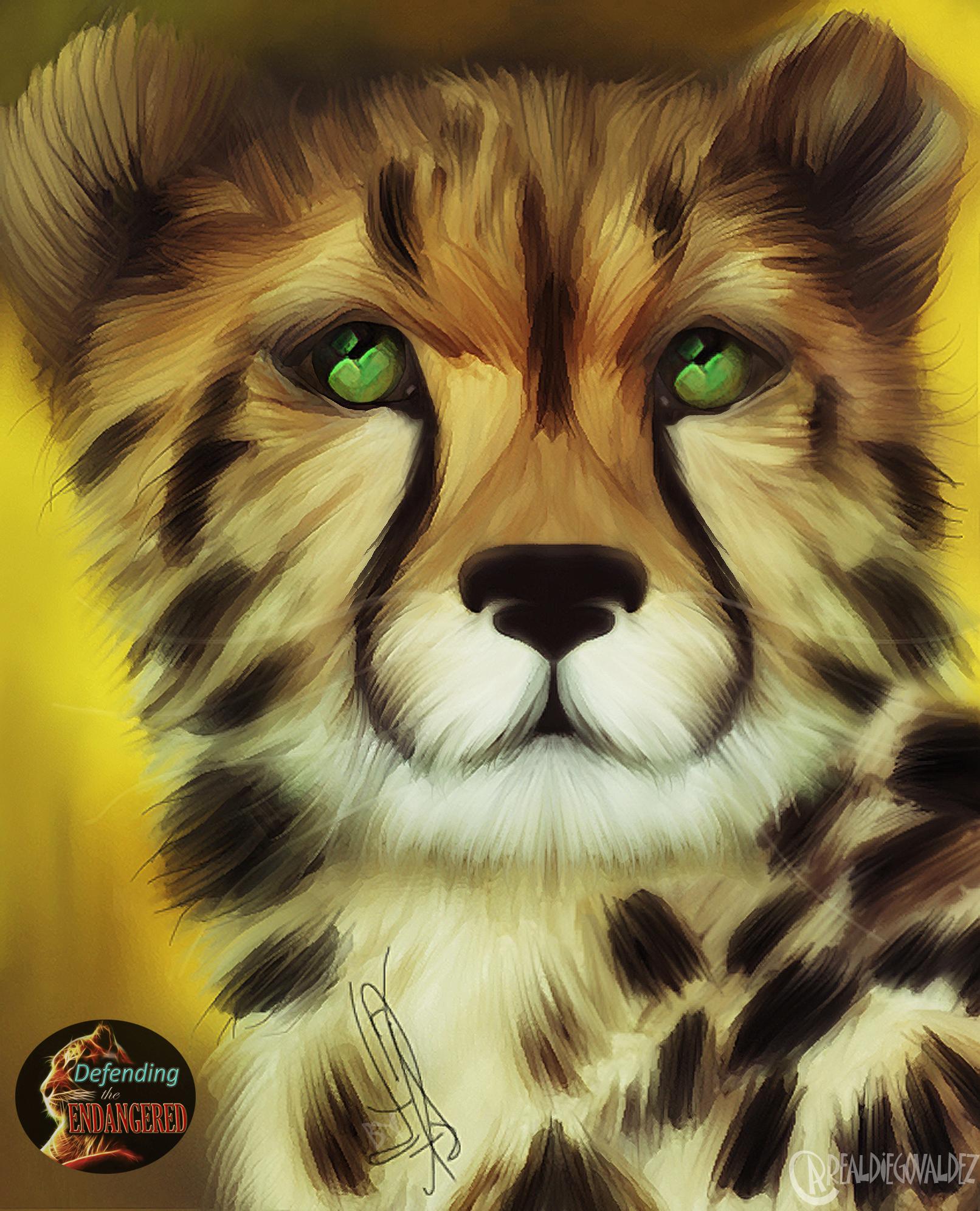 Cheetah - Diego Valdez