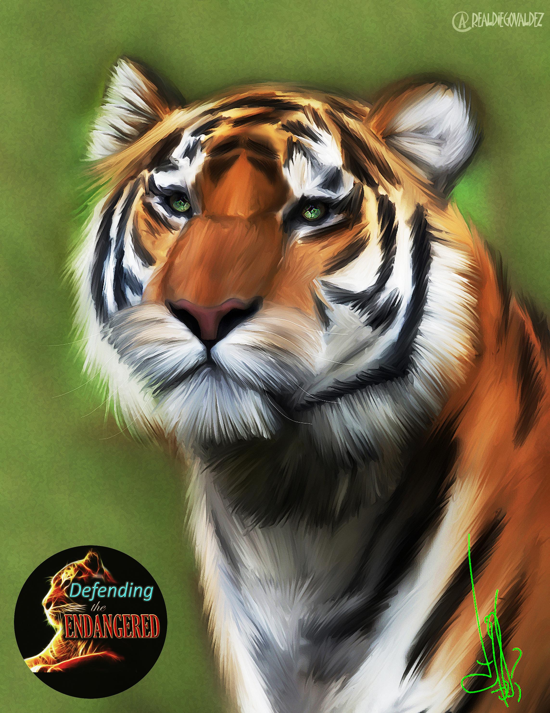 Tiger 1 - Diego Valdez