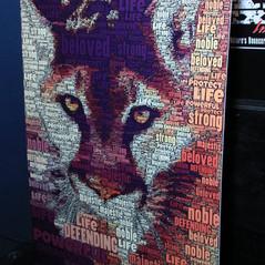 DTE/Cat Dexx Fall 2018 Fundraiser