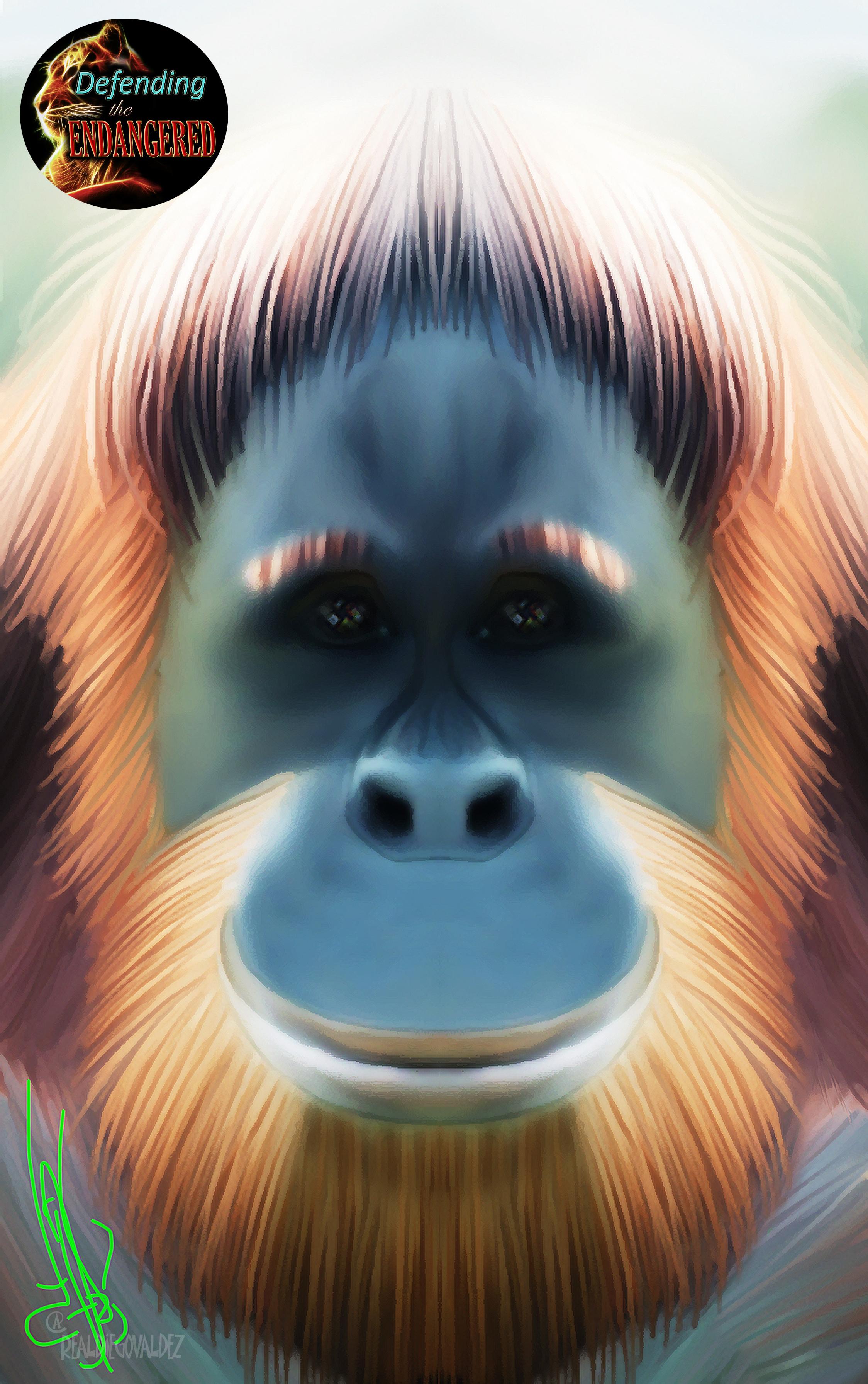 Sumatran Orangutan - Diego Valdez