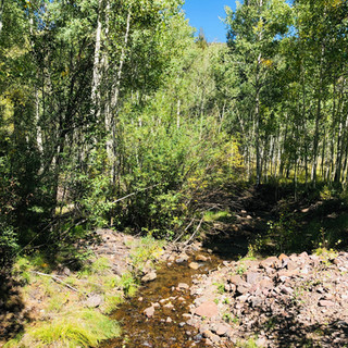24 Deer Park, Antonito, CO-1.0 ac $49,500