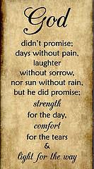 Purpose – Process – Pain – Promise