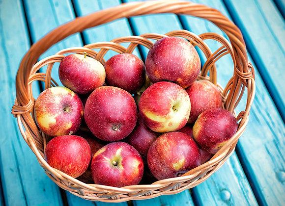 ÆBLER PR 10 STK