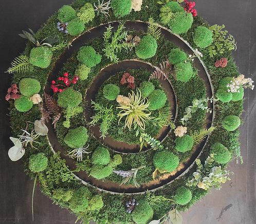 Pflanzenbild Ø 75 cm