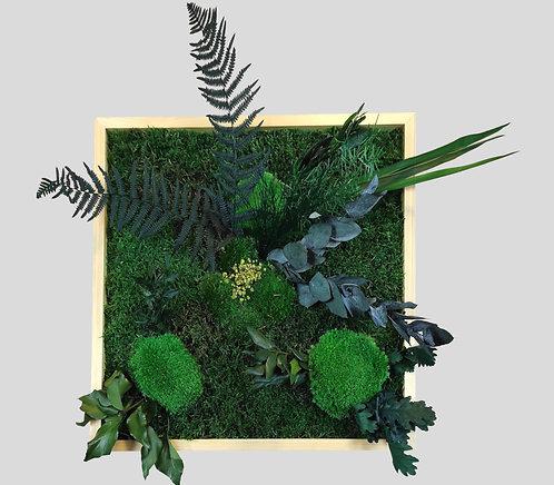 Pflanzenbild 40x40 cm