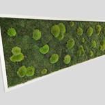 Waldmoosbild 150x50 cm