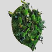 Dschungelbild Herz 60 cm