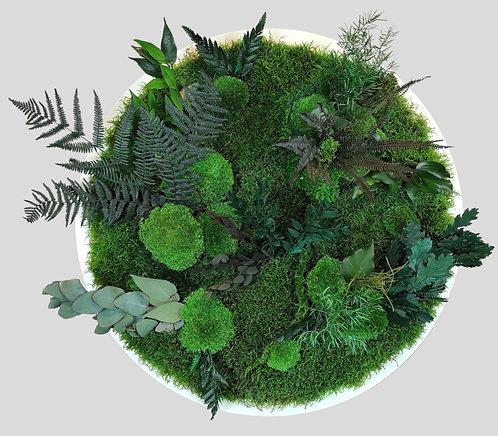 Pflanzenbild Ø 60 cm