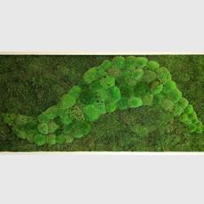 Moosbild 150x70 cm