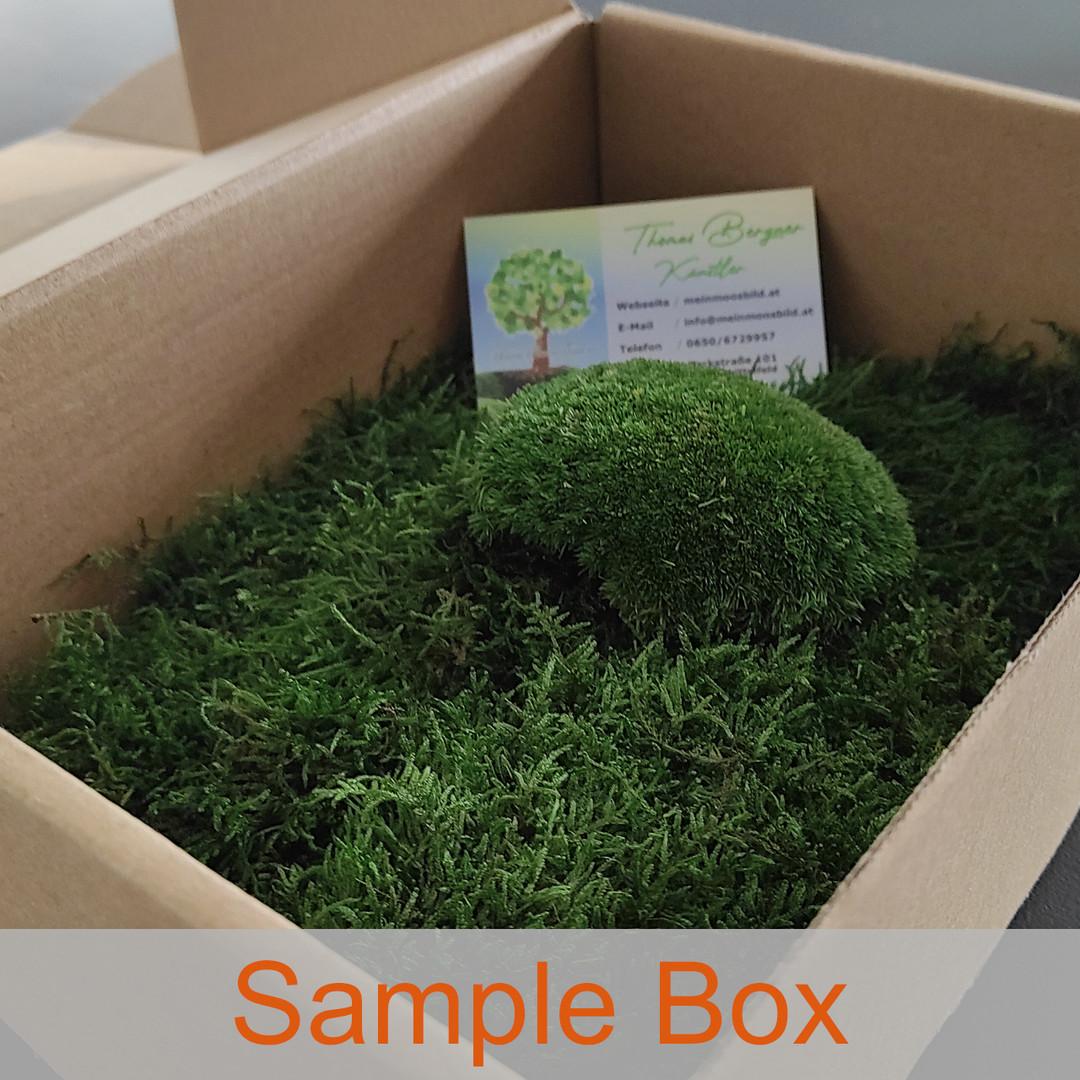 Moos sample box